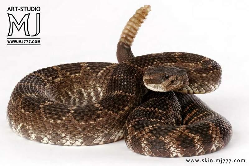 Змейка своими руками картинки