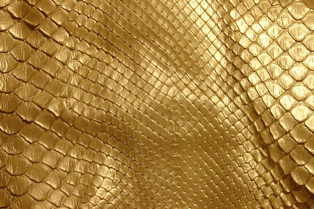 Золотая кожа картинки